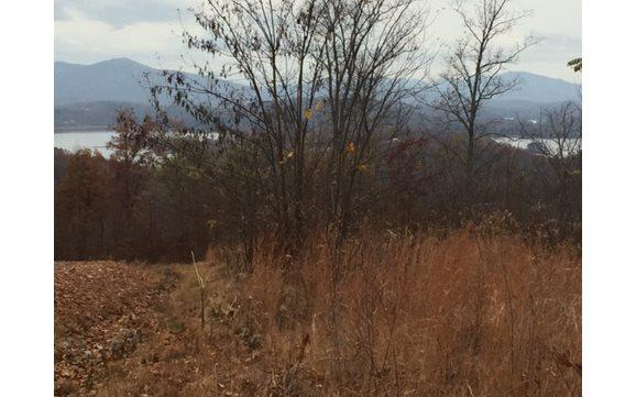 48M MOUNTAIN HARBOUR, Hayesville, NC 28904 (MLS #268756) :: RE/MAX Town & Country