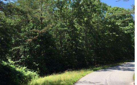 LT 12 Spring Hills Lane, Blairsville, GA 30512 (MLS #269208) :: RE/MAX Town & Country