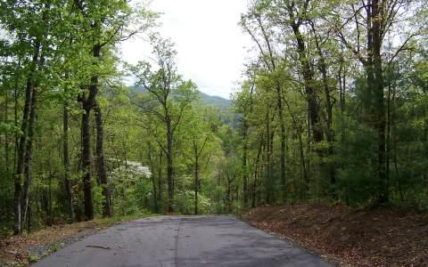 LT 49 Bear Cove Subd, Hayesville, NC 28904 (MLS #269443) :: RE/MAX Town & Country