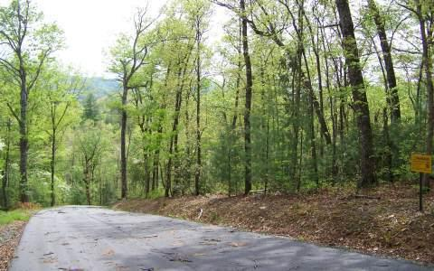 LT 50 Bear Cove Subd, Hayesville, NC 28904 (MLS #269444) :: RE/MAX Town & Country