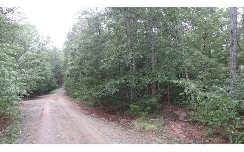 LT 5 Summer Drive, Morganton, GA 30560 (MLS #269476) :: RE/MAX Town & Country