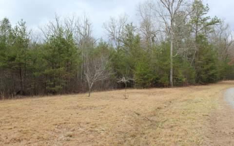 LOT 6 Pine Lane, Mineral Bluff, GA 30559 (MLS #269511) :: RE/MAX Town & Country
