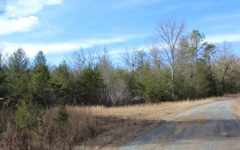 LOT 7 Pine Lane, Mineral Bluff, GA 30559 (MLS #269512) :: RE/MAX Town & Country