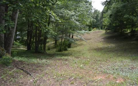 #1 Buena Vista, Hayesville, NC 28904 (MLS #269527) :: Path & Post Real Estate