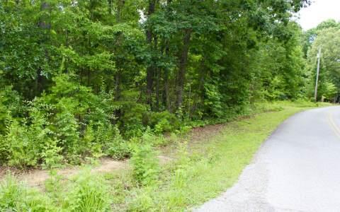 LT 15 Fain Street, Morganton, GA 30560 (MLS #269559) :: RE/MAX Town & Country
