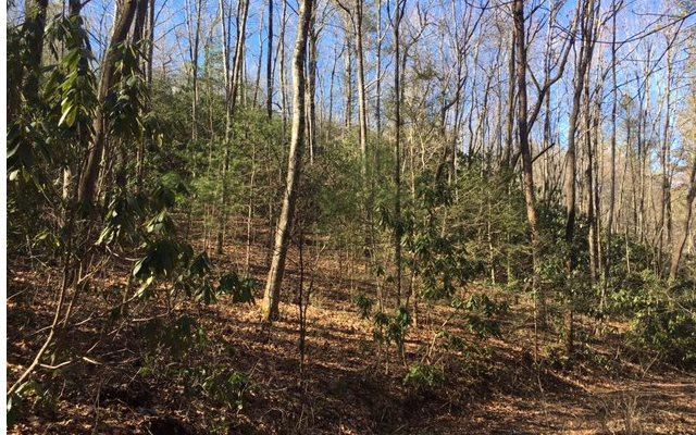 Whispering Pines Hol, Andrews, NC 28901 (MLS #269591) :: RE/MAX Town & Country