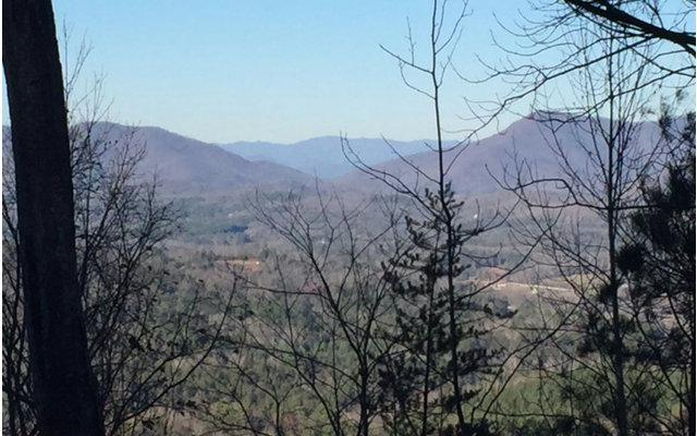 LT 9 Chestnut Cove Road, Blairsville, GA 30512 (MLS #269839) :: RE/MAX Town & Country