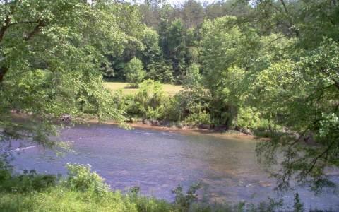 LT 21 Fishtrap Trail, Mineral Bluff, GA 30559 (MLS #270158) :: RE/MAX Town & Country