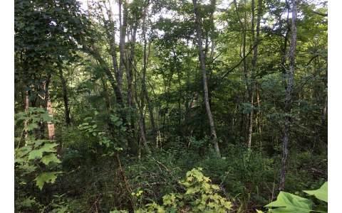 Crockett Mountain La, Hayesville, NC 28904 (MLS #270227) :: RE/MAX Town & Country
