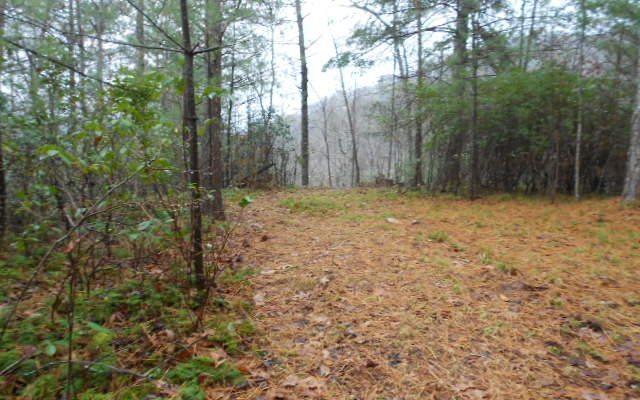 LOT 5 White Oak Drive, Hiawassee, GA 30546 (MLS #271285) :: RE/MAX Town & Country