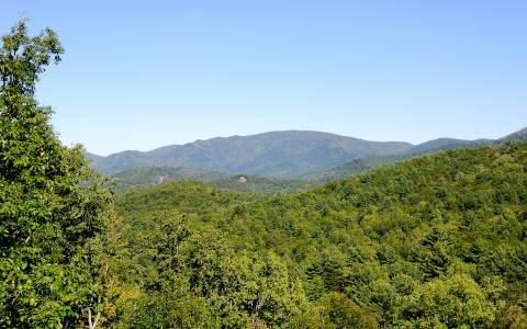 16A&B Snaggletooth, Blairsville, GA 30512 (MLS #271395) :: RE/MAX Town & Country