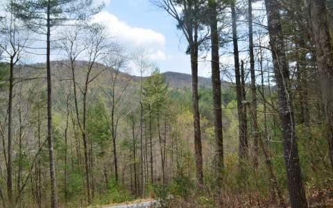 LT 1 Indian Ridge, Blue Ridge, GA 30513 (MLS #271582) :: RE/MAX Town & Country