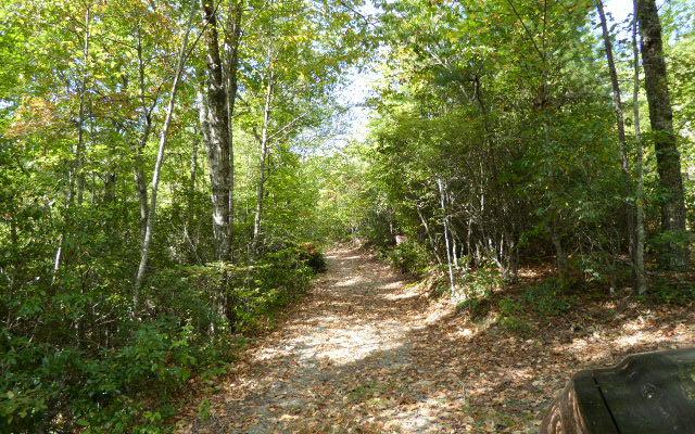 LT 4 Shearer Creek, Hayesville, NC 28904 (MLS #272162) :: RE/MAX Town & Country