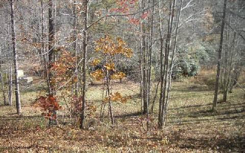 #9 Smokerise, Hayesville, NC 28904 (MLS #272854) :: RE/MAX Town & Country