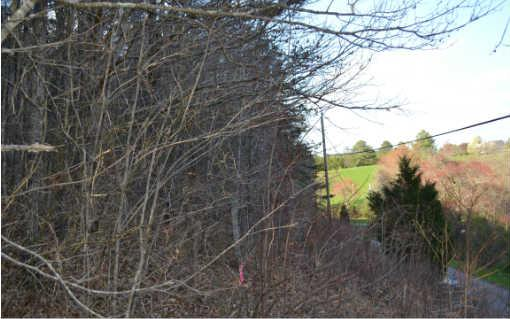 104 Hideaway Trail, Copperhill, TN 37317 (MLS #272969) :: RE/MAX Town & Country