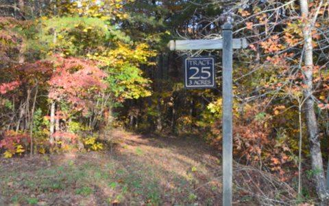 LOT25 Clear Creek Valley, Ellijay, GA 30536 (MLS #273097) :: RE/MAX Town & Country