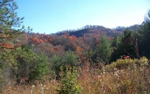 LT 26 Sweetwater Bend, Hayesville, NC 28904 (MLS #273416) :: RE/MAX Town & Country