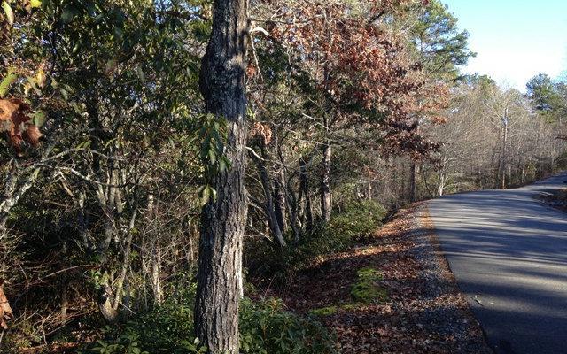 Maggie Lane, Murphy, NC 28906 (MLS #274041) :: RE/MAX Town & Country