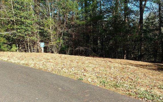 33/34 Maple Rest Trail, Ellijay, GA 30540 (MLS #274140) :: RE/MAX Town & Country