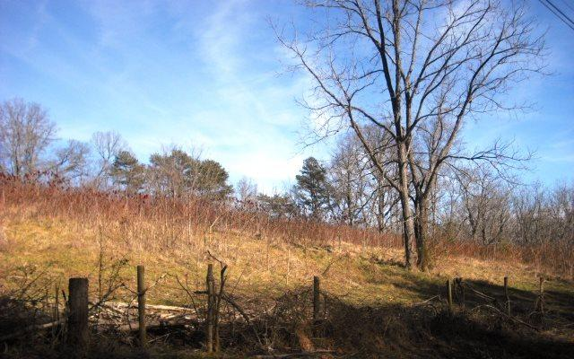 LOT 3 Ridgeview Acres, Hayesville, NC 28904 (MLS #274285) :: RE/MAX Town & Country
