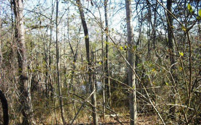 LOT 4 Ridgeview Acres, Hayesville, NC 28904 (MLS #274286) :: RE/MAX Town & Country