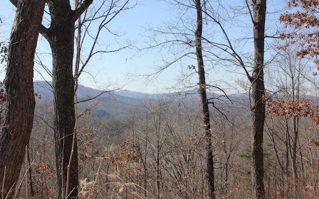 LT44 The Arbor, Blairsville, GA 30512 (MLS #274450) :: RE/MAX Town & Country