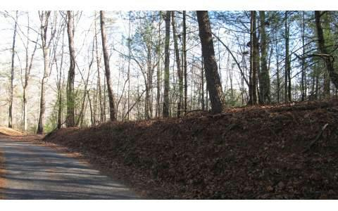 LT 13 Spiva Cove Mtn Trail, Blairsville, GA 30512 (MLS #274464) :: RE/MAX Town & Country