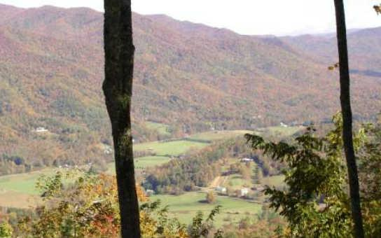 37 Double Knob, Hayesville, NC 28904 (MLS #274561) :: RE/MAX Town & Country