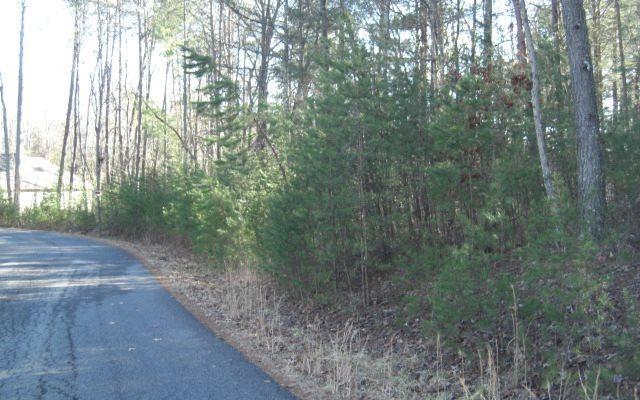 Farmer Estates, Mineral Bluff, GA 30559 (MLS #274573) :: RE/MAX Town & Country