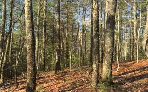 TRACT Cooper Ridge Road, Suches, GA 30572 (MLS #274639) :: RE/MAX Town & Country