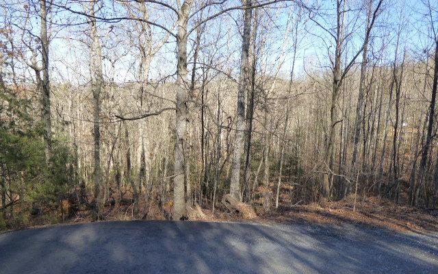 LT 37 Mountain Valley Lane, Blairsville, GA 30512 (MLS #274692) :: RE/MAX Town & Country
