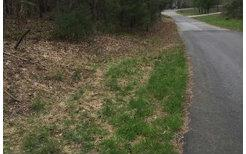5LOTS The Mountain Sub, Blairsville, GA 30512 (MLS #274711) :: RE/MAX Town & Country