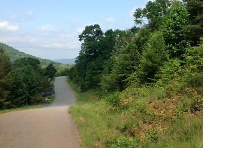 104 Four Seasons Landing, Blairsville, GA 30512 (MLS #274714) :: RE/MAX Town & Country