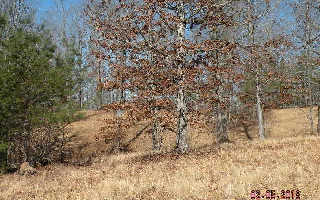 LOT 1 Chatuge Shores Overl, Hayesville, NC 28904 (MLS #275187) :: RE/MAX Town & Country