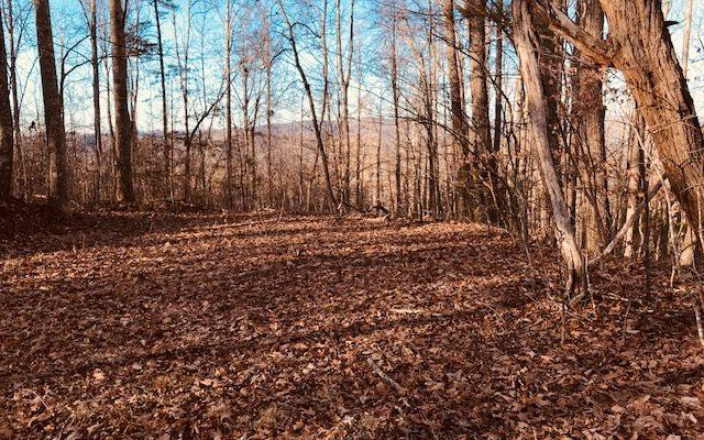 LOT26 Longview Road, Hayesville, NC 28904 (MLS #275241) :: RE/MAX Town & Country