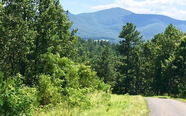 LT 40 Hills At Queen Gap, Blairsville, GA 30512 (MLS #275276) :: RE/MAX Town & Country