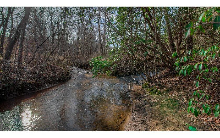 Jones Creek - Photo 1