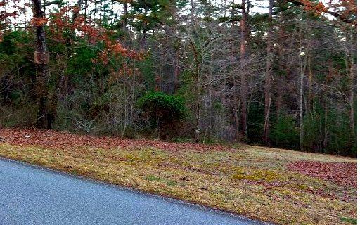 34 Chapel Hill Lt51, Blairsville, GA 30512 (MLS #275421) :: RE/MAX Town & Country