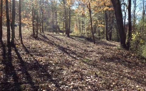 Doublehead Gap Road, Cherry Log, GA 30522 (MLS #275711) :: RE/MAX Town & Country