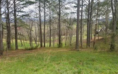 LOT 4 Butterfly Lane, Blairsville, GA 30512 (MLS #276174) :: RE/MAX Town & Country