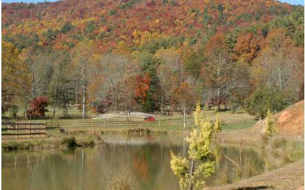 LT 14 Cohutta Ranch, Blue Ridge, GA 30513 (MLS #276422) :: RE/MAX Town & Country