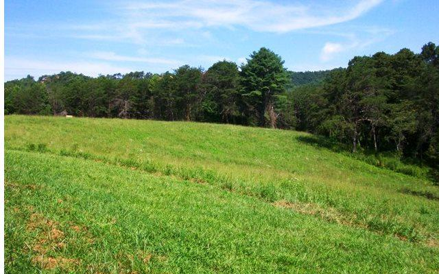 Lot 29 Jesse Trail, Murphy, NC 28906 (MLS #276648) :: RE/MAX Town & Country
