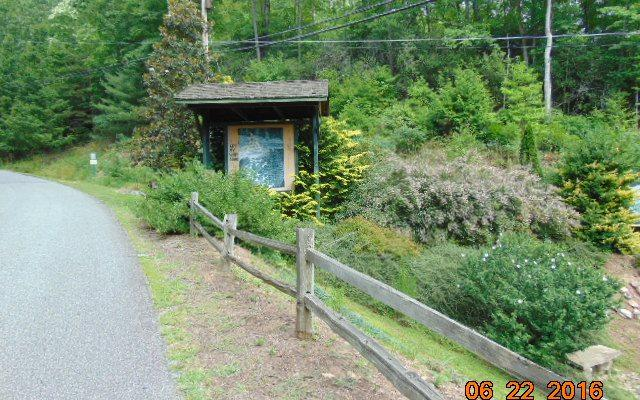 LT349 Mountain Tops Rd, Blue Ridge, GA 30513 (MLS #276784) :: RE/MAX Town & Country
