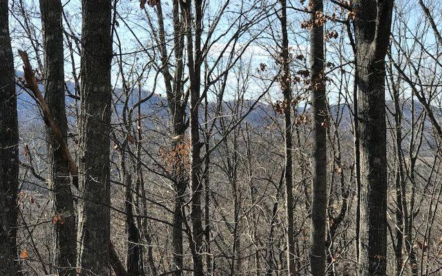 45&46 Dogwood Circle, Young Harris, GA 30582 (MLS #276864) :: RE/MAX Town & Country