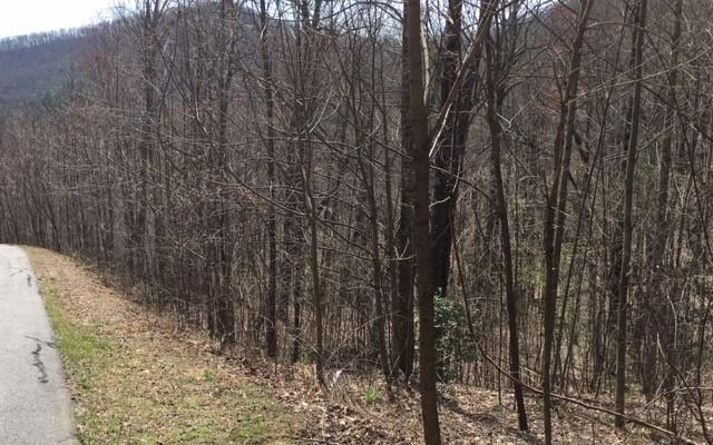 LT15 Overlook At Yh, Young Harris, GA 30582 (MLS #276980) :: RE/MAX Town & Country