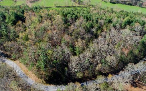 LOT 9 Wolf Creek Estates, Blairsville, GA 30512 (MLS #277138) :: RE/MAX Town & Country