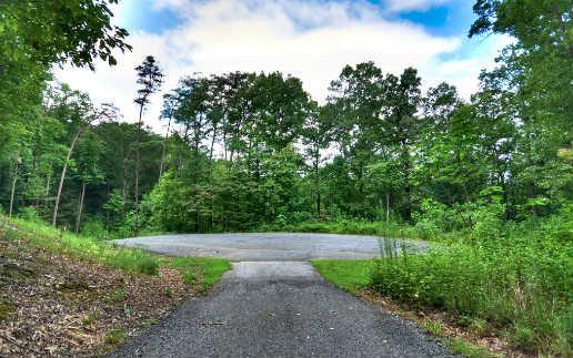 LT 2 Ivy Ridge, Blue Ridge, GA 30513 (MLS #277875) :: RE/MAX Town & Country