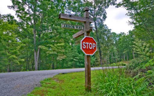 LT 3 Ivy Ridge, Blue Ridge, GA 30513 (MLS #277877) :: RE/MAX Town & Country