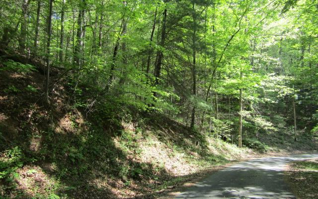3 Lonesome Pine, Murphy, NC 28906 (MLS #277913) :: RE/MAX Town & Country