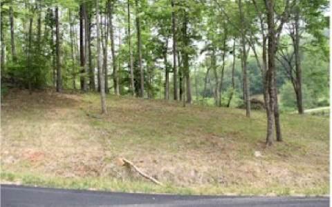 LT 11 Oak Ridge South - Photo 1